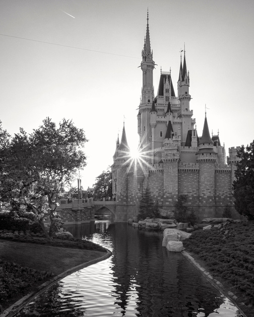 MLCreations Photography: WDW in B&W &emdash; Star of the Show