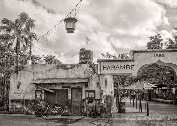 MLCreations Photography: WDW in B&W &emdash; Harambe Market