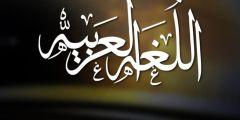 دوسية تخصص لغة عربية لاختبار توظيف وكالة وحكومة