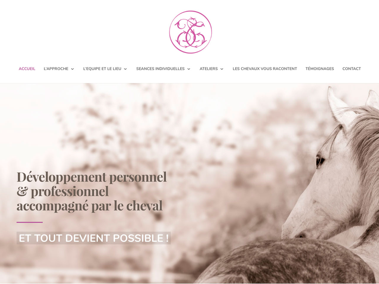 Site_responsive_Wordpress_STiale