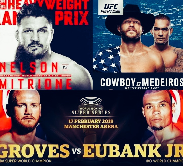 MMA India's Combat Sports Weekend Lineup (17-18th Feb 2018) - sports