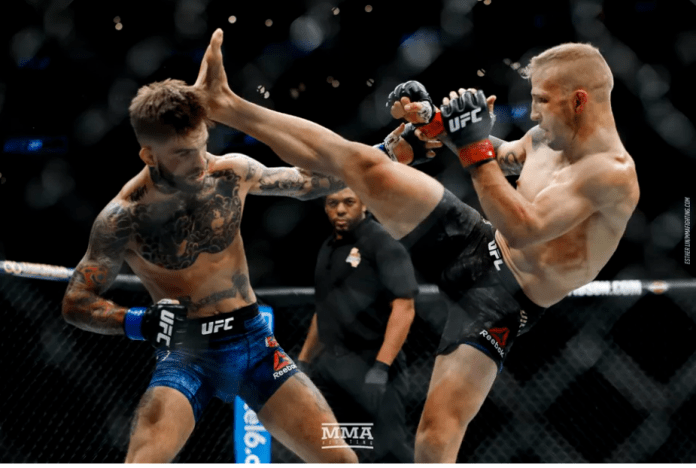 VIDEO. Rezultate și rezumate UFC 227: TJ Dillashaw vs Cody Garbrandt 2 | Sursa foto: Esther Lin, MMA Fighting