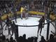 VIDEO. Un luptător a început să bea bere din public între runde!