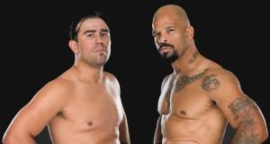 Bellator 132 Virgil Zwicker vs. Houston Alexander