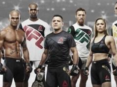 UFC Fight Kit