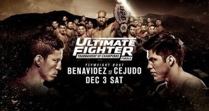 TUF 24: Tournament Of Champions Finale, The Ultimate Fighter