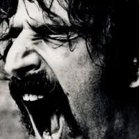 Non so scrivere di Frank Zappa