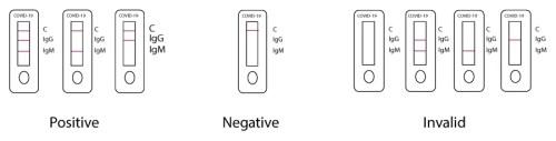 interpretazione-del-risultato-test-rapido-Covid-19
