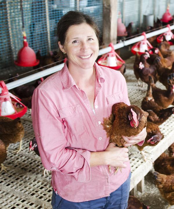 Amanda's Eggs & Pastured Poultry