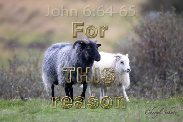 For This Reason - The Giving blog by Cheryl Schatz