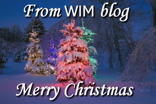 Women in Ministry blog by Cheryl Schatz Merry Christmas to all