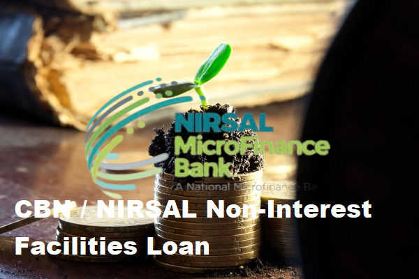 How To Apply For CBN NIRSAL Non Interest Facilities Loan 3