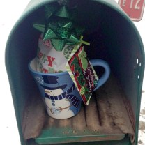 Random Act of Christmas Kindness - Mailman
