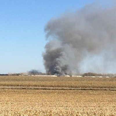 Devastating Consequences From A Sow Farm Fire