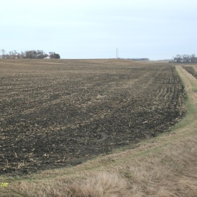 Dear Governor Dayton, Let's Talk Buffer Strips
