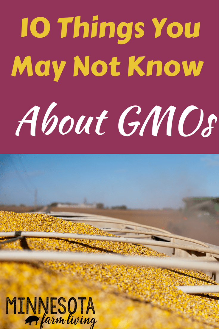 GMOs is a technology that farmers utilize. It allows them to use less pesiticides. Most people don't realize the benefits so here is a list of 10 things you may not know about GMOs.