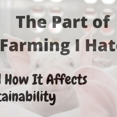 The Part Of Farming I Hate And How It Affects Sustainability