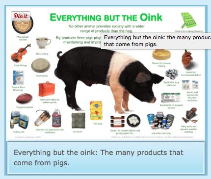Pig Bi-Products