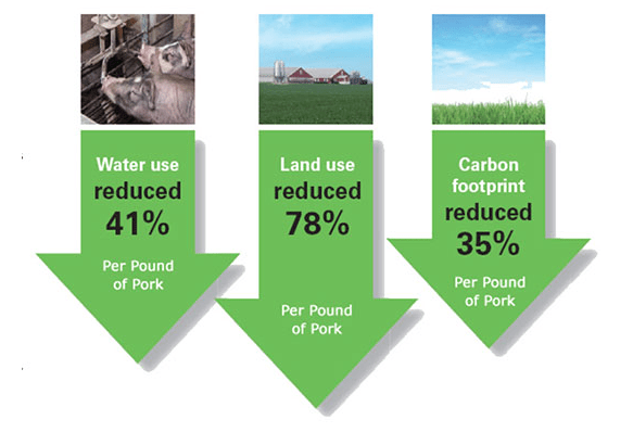 Pork carbon Footprint