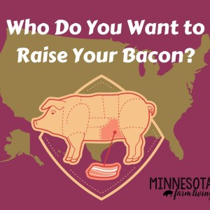 Who do you want to raise your bacon?