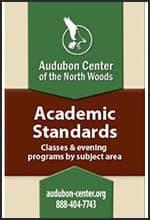 Academic Standards