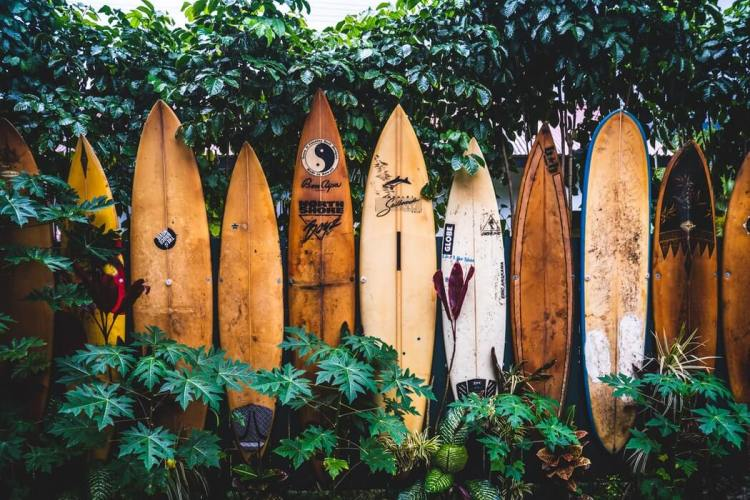 Surfplanken Hawaii
