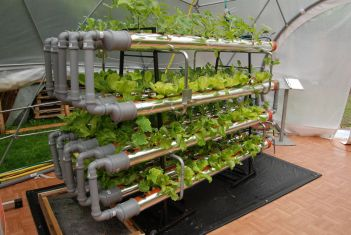 Go Grow Planters fund sustainable work through Operation Mobilization