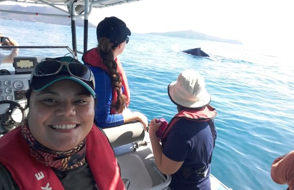 Staff joins the Great Barrier Reef Whale and Dolphin Research Programme in Australia