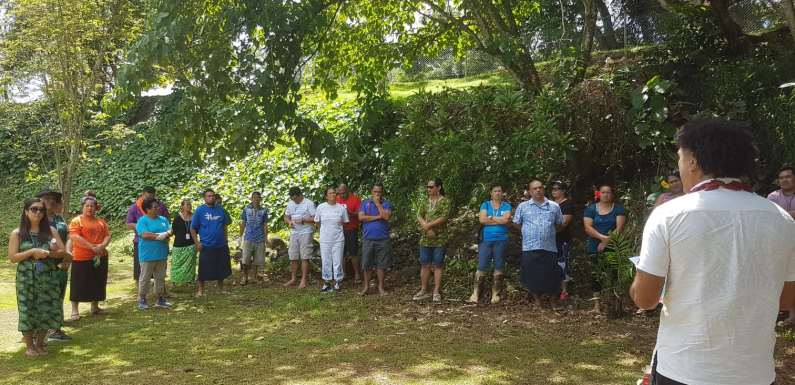 PLANTING OF 2000 NATIVE COASTAL AND LOWLAND FOREST TREES