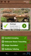 Pilzführer Pro Android test (21)