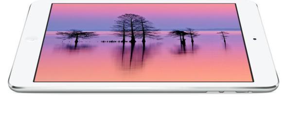 ipad mini display_image