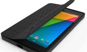 Nexus 7 GEL (1)