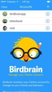 Birdbrain (1)