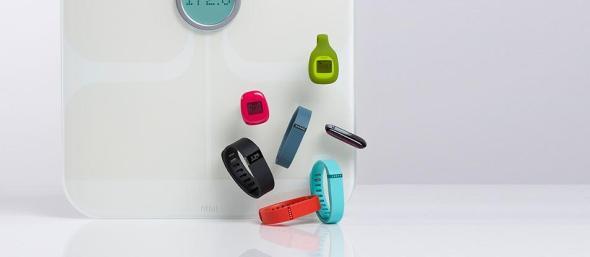 Fitbit Header