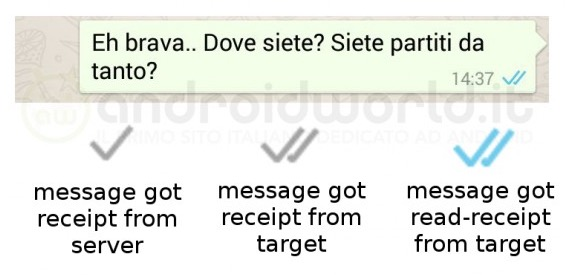 Whatsapp_Gelesen