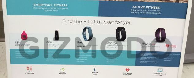 Fitbit Lineup 2014