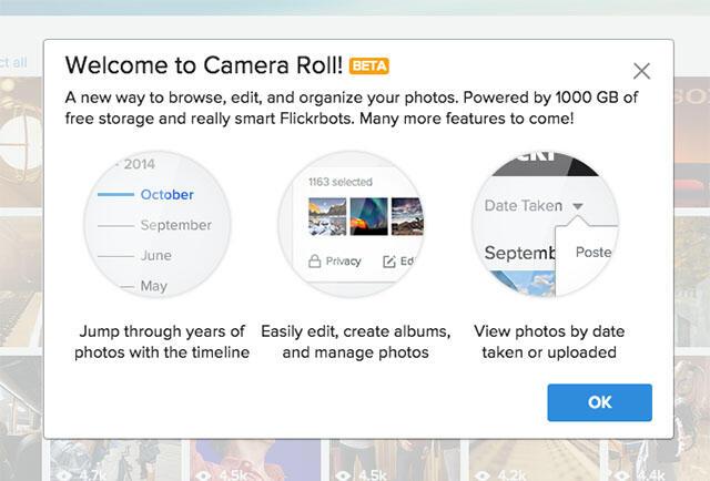 Flickr Camera Roll 01