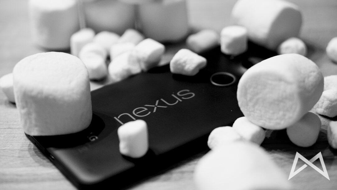 Nexus 5X Schriftzug