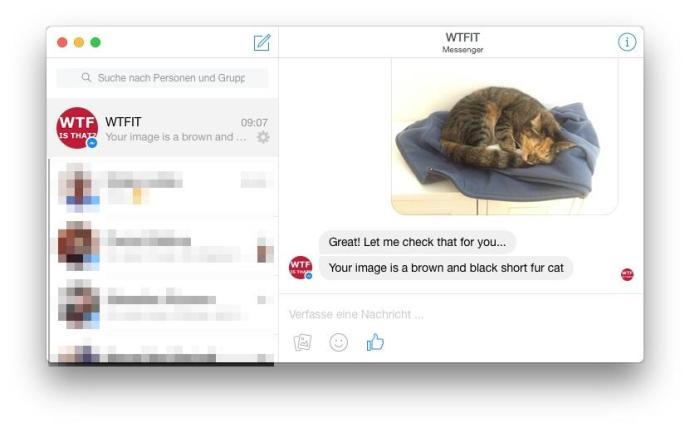 wtfit bot cat