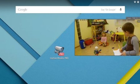 tinycam-monitor-pro