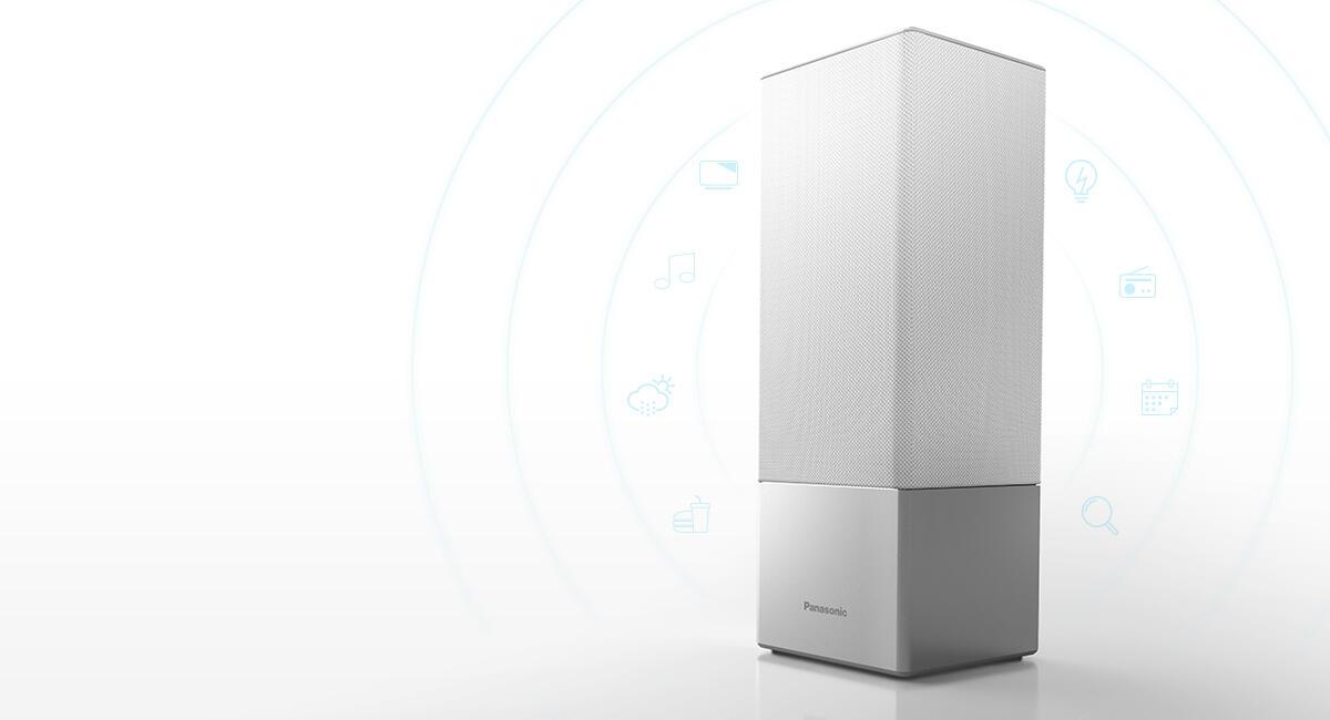 Panasonic Ga10