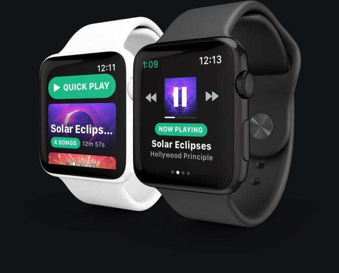 Snowy Spotify Apple Watch
