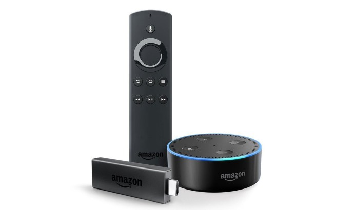 Echo Dot Bundle Fire Tv Stick