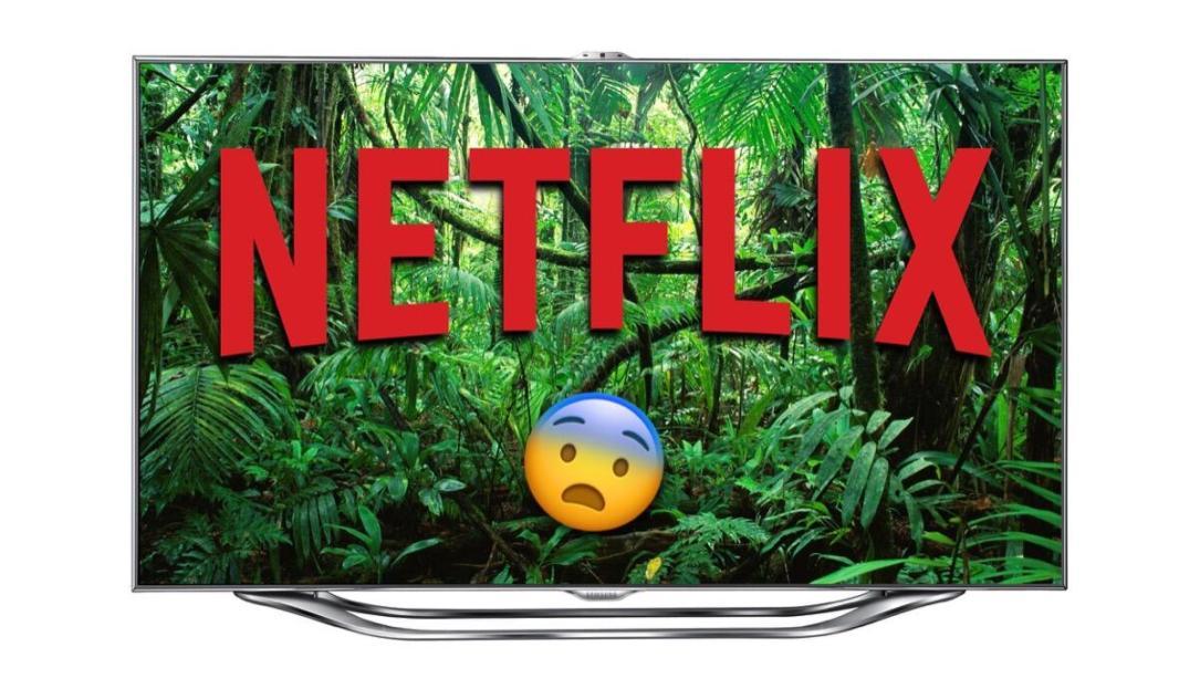 Netflix Dschungel Header