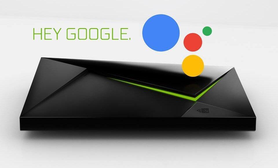 Google Assistant De