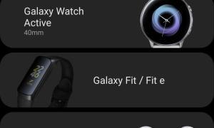 Samsung Galaxy Wearable Leak