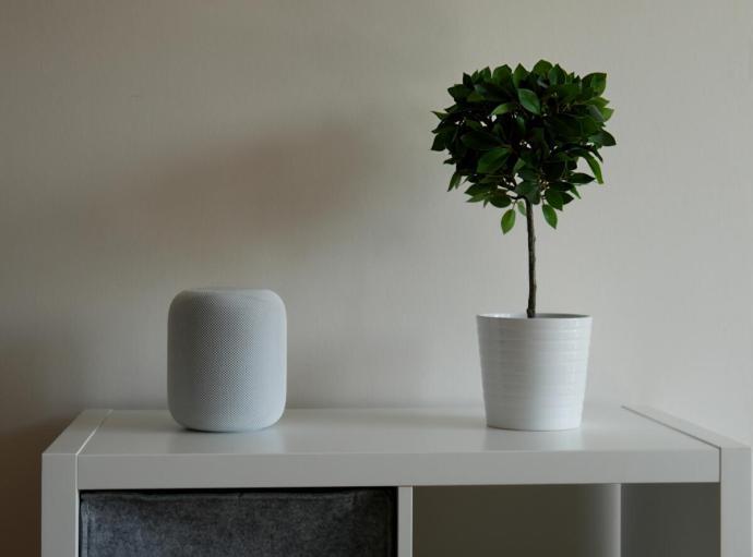 Apple Homepod Wohnzimmer