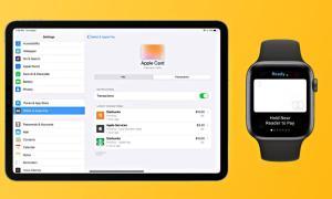 Apple Card Ipad