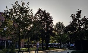 Xiaomi Mi A3 Kamera 07