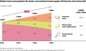 Meat Market Forecast